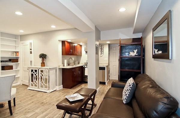 Basement Apartment Design Ideas Style