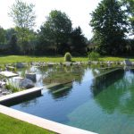 square natural swimming pool small artificial lake well groomed garden pretty natural swimming pool