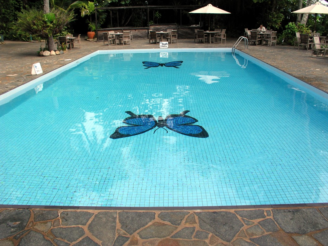 Get the best brand of swimming pools with intex swimming for Best in ground pool
