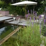 wooden pool bridge green water green environment white garden chair beautiful natural swimming pool ideas for house