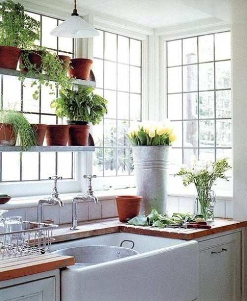 garden window in the kitchen many pots and plants kitchen faucet and