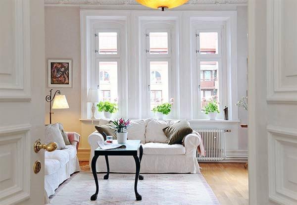 Best floor hardwood pad area rug for