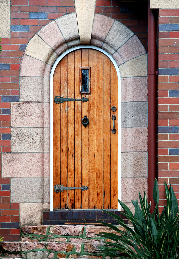 The best choice of cool front doors for you homesfeed for Best wood for front door