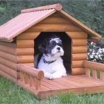 amazing cool wonderful ncie adorable fantastic dog house idea with wooden design and has nice small deck railing concept