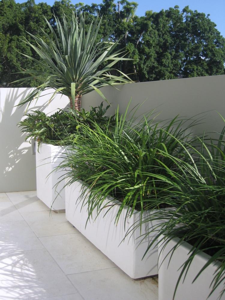 Concrete planter box designs homesfeed for Planter design ideas