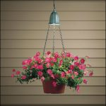 beautiful hanging plant with full of pink flowers and metal chains hang on a mini pendant lamp fixture
