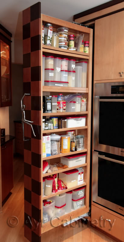 Compact Adorablenice Wonderful Amazing Pull Out Pantry With Wooden Made  Concept And Has Built In Design