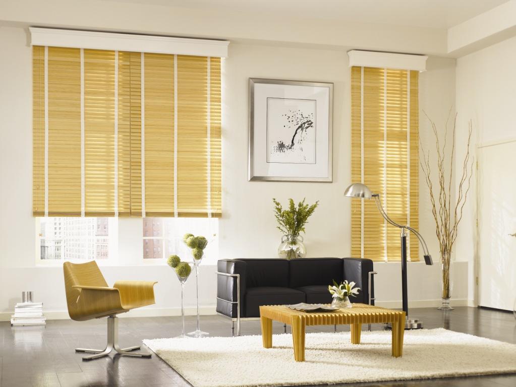 Wonderful variants of graber blind design for homes for Modern living room blinds