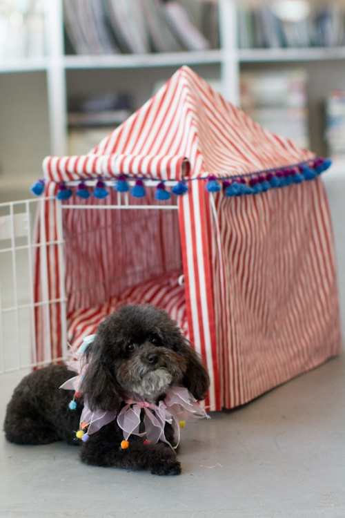 Cute dog crates roselawnlutheran - Como hacer camitas para perros ...