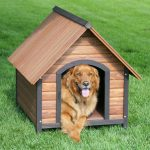 dog house with one vision made from wood planks