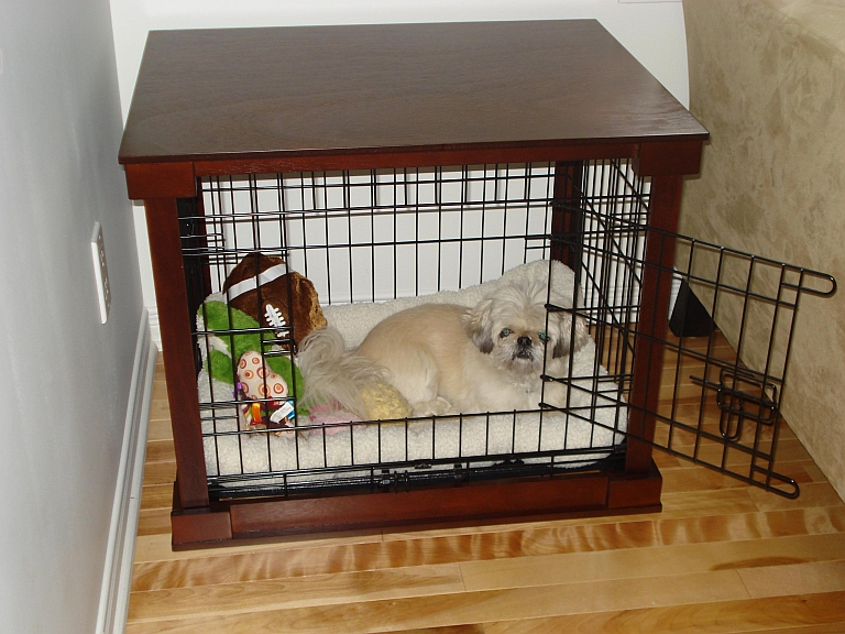 Super Best and Nice Dog Crates Materials | HomesFeed MB85