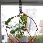 mini white pot with plant in red metal-wire cage hang by black metal chain on the ceiling