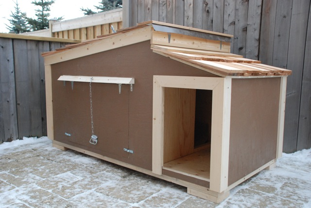 custom insulated dog house plans - arts