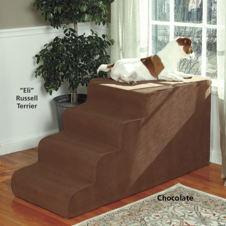 Dog Steps For Bed >> Creative Idea of Pet Window Perch for Small Room | HomesFeed