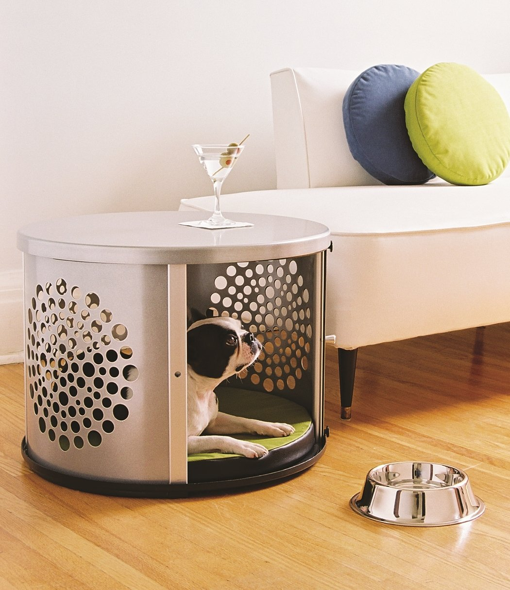 Create Extra Comfort For Your Lovely Dog With Fancy Dog