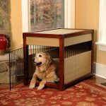 simple and cozy dog crate with wire door and dried-root crafts for wall red Persian rug hardwood floor installation