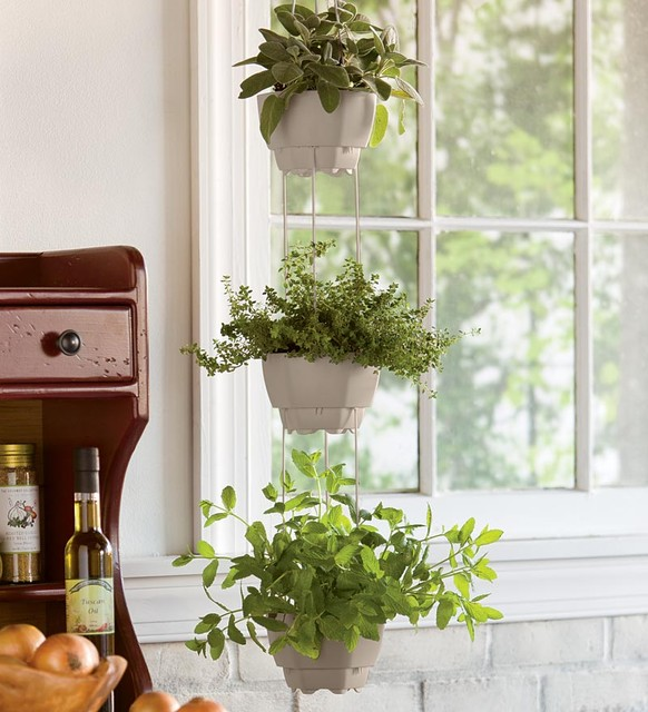 Hanging Plants Indoor: Ergonomic, Elegant, and Stylish Indoor ...