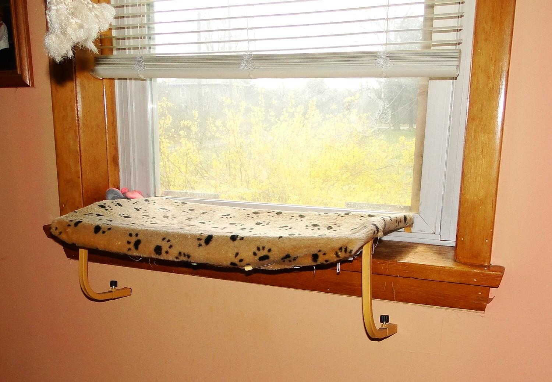 window perch for pets with petu0027s footprints patterna white window shutters