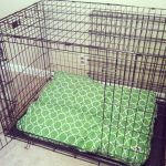 wire dog crate unit with green-patterned mattress feature