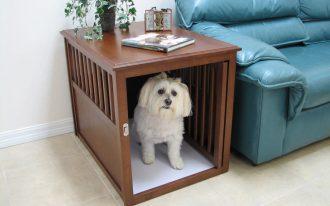 wood dog box house end as the sidetable a plant ornament a book fair blue sofa large fair cream ceramic tiles floor