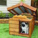 wooden dog house with opened-closed rooftop