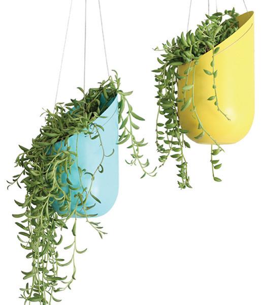 Hanging plants indoor ergonomic elegant and stylish for Colorful hanging planters