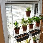adorable-nice-cool-awesome-mdoern-nice-blinds-drawn-shelve-hanging-plants-with-glass-made-design-concept-for-small-pots