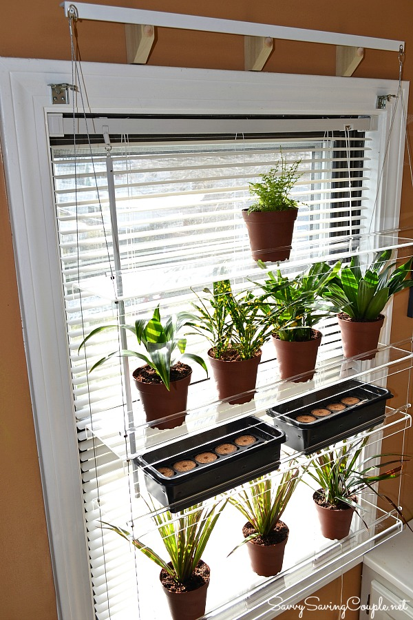 Window Shelves For Plants Pictures To Pin On Pinterest