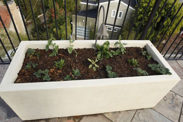 adorable-nice-cool-large-medium-concrete-planter-boxes- & Various Concept of Concrete Planter Boxes for Home Exterior Design ... Aboutintivar.Com