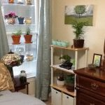 adorable-nice-cute-cool-fantastic-Hanging-Window-Plant-Shelves-Kathy-with-nice-simple-rack-near-the-window-for-getting-sunlight