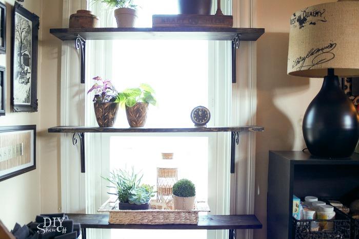 Kinds Of Shelves Hanging Plants Decoration Idea Homesfeed
