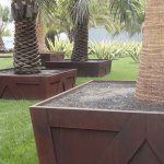 cement box for palm tree planter