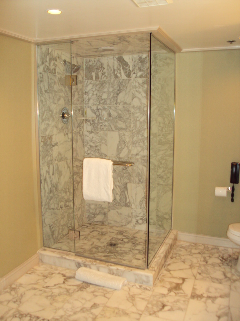 Contemporary Walk In Shower With Glass Panels Without Frame A Planted Shower Head  A
