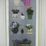 cool-adorable-nice-modern-awesome-shelve-hanging-plants-with-small-concept-put-neat-window-for-alive-flowers