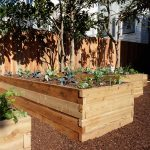elevated wood boxes containing grounds as media of planting