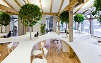 fantastic-coolest-adorable-nice-unique-indoor-trees-office-building-uses-trees-and-potted-plants-to-keep-the-people-with-nice-arge-tree-with-wonderful-white-long-table-728x400
