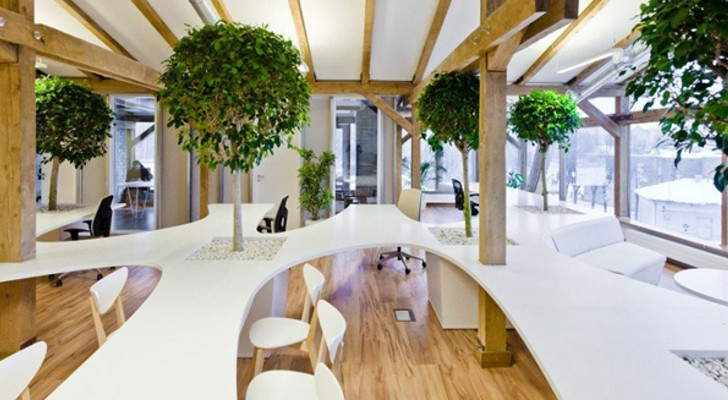 Nice Concept for Indoor Tree Planter Box | HomesFeed