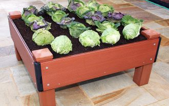 medium-size wood  for raised bed as planting media of vegetables