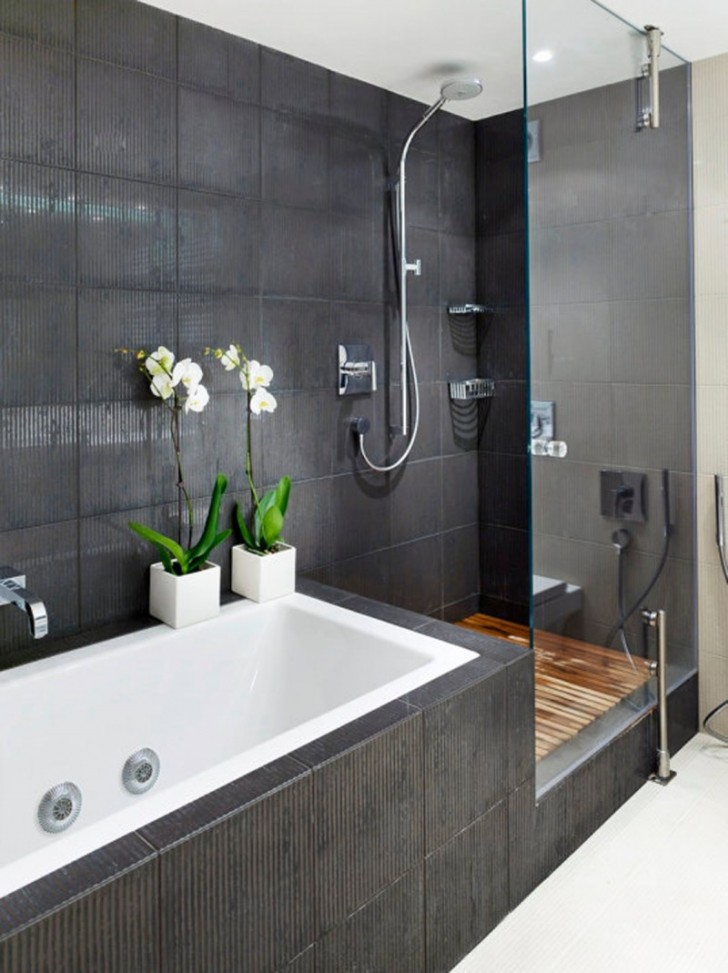 Small Bathroom Ideas With Separate Tub And Shower Home Designs. Small Bathrooms With Separate Shower And Tub   Rukinet com