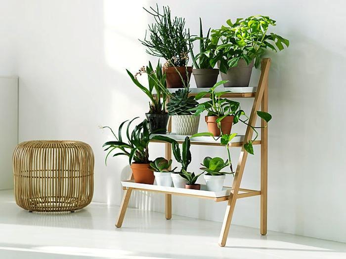 wonderful-cool-adorable-nice-simple-small-shelve-hanging-plants-with-design-sponge-diy-hanging-pots-like-ladder-design