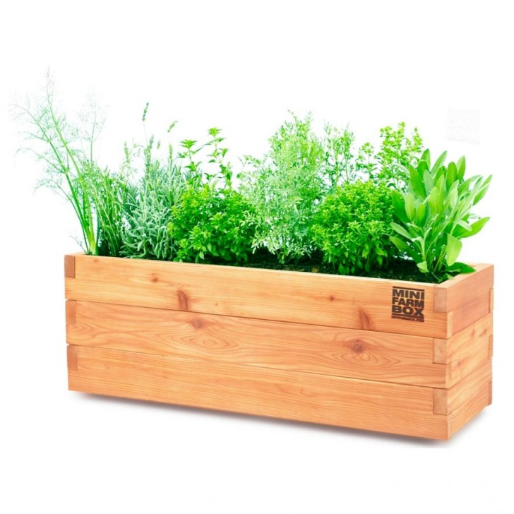 Incredible design of wood planter boxes for big plants for Wooden garden planter designs