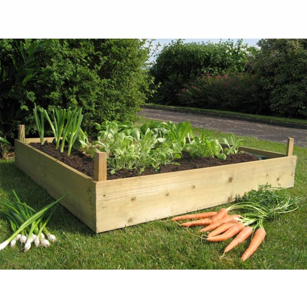 Wood For Raised Beds A Practical Way Of Gardening Homesfeed