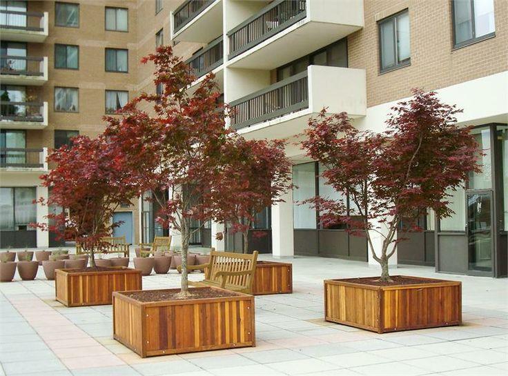 Tips Of Selecting Tree Planter Box Homesfeed