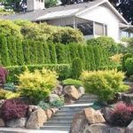 amazing entrance landscape design seattle with staircase and boulders and purple shrub and tall lush greenery