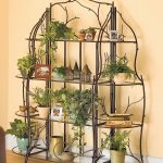 Amazing Group Of Indoor Plant Shelves With Three Levels Model Filled With Various Greenery With Tree Branch Decoration Beneath Orange Wall Upon Bamboo Flooring
