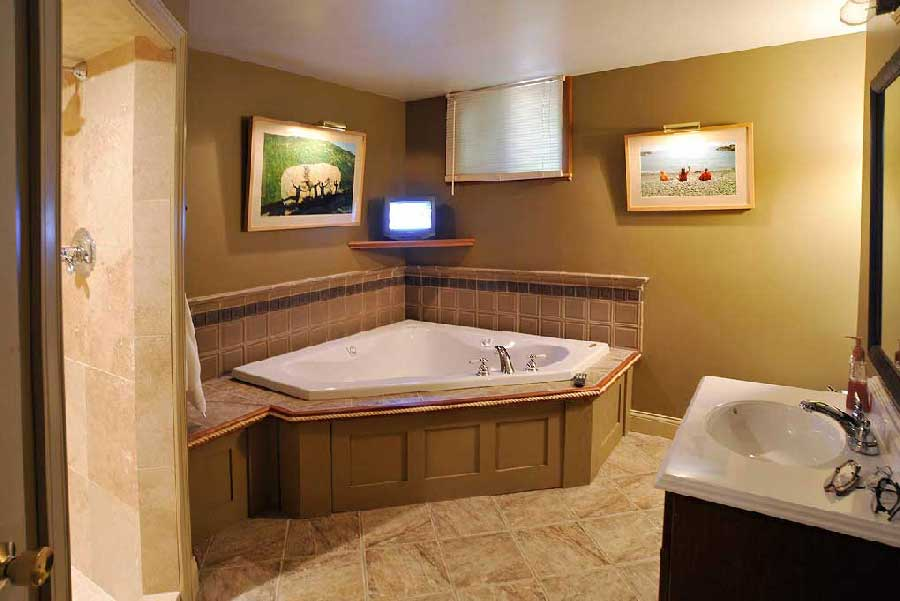 Accessible basement bathroom ideas with tasteful and less for Finished bathroom ideas