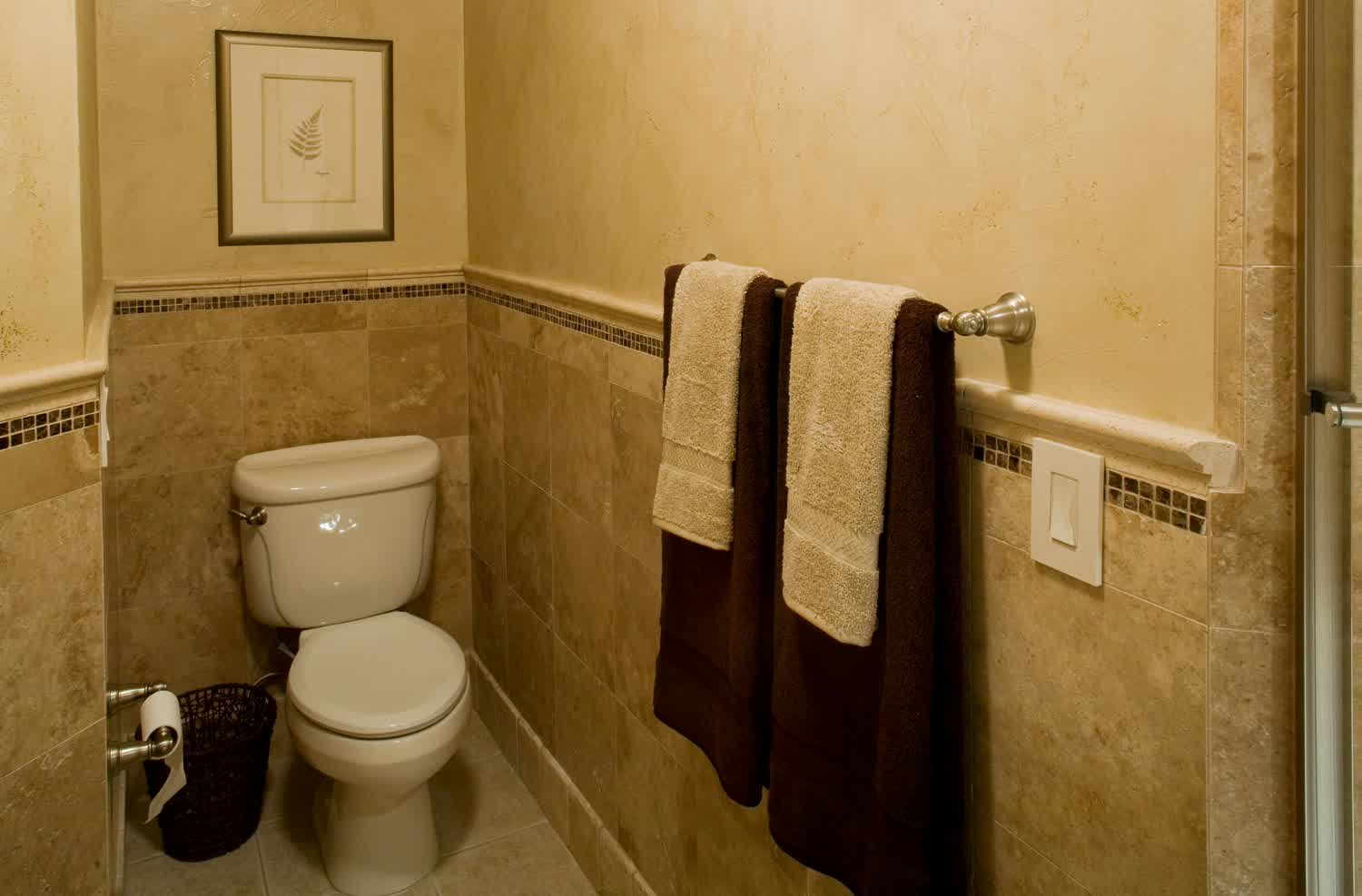 Accessible basement bathroom ideas with tasteful and less for Toilet bathroom design