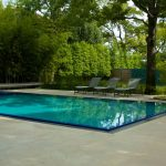 fancy rectangle pool designs in contemporary style with pool lounge chairs plus shade green plants and natural floor