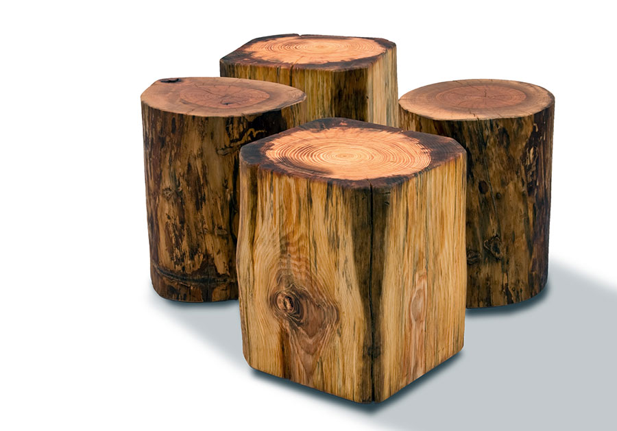 Natural tree stump side table brings nature fragment into for Wood stump end table