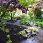 landscape design seattle with concrete patio and big trees combination with stone and grassy meadow and dcorative plants